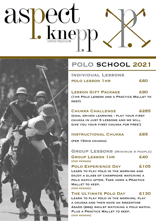 Polo School Price List 2021 gold.jpg