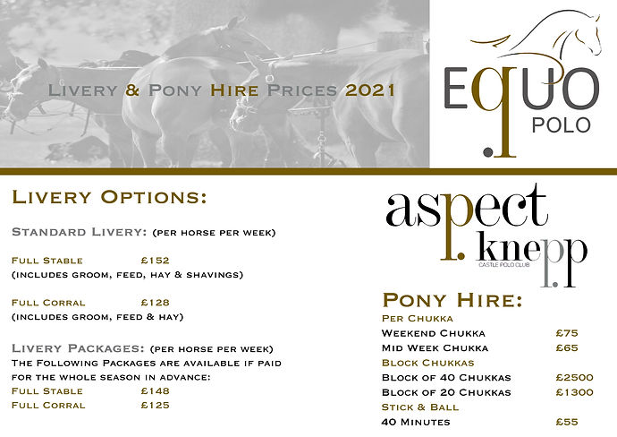 Livery and Pony Hire 2021 gold.jpg