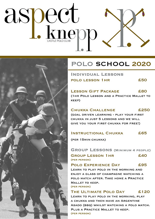 Polo School Price List 2020 gold.jpg