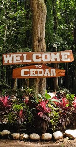 CENTER FOR ENVIRONMENTAL DEVELOPMENT AND RECREATION (CEDAR