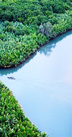 BALIANGAO PROTECTED LANDSCAPE AND SEASCAPE (BPLS)