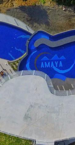 AMAYA VIEW