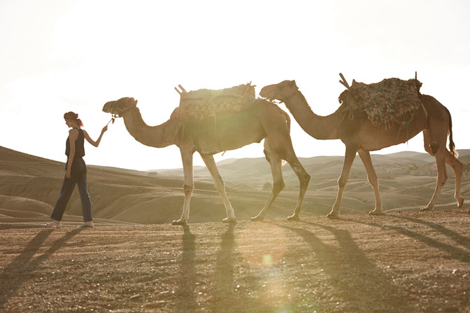 20141125_MarrakechLaPause_05_150.jpg