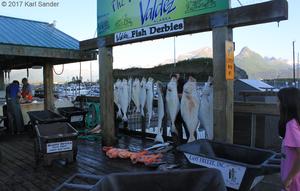 The day's catch in Valdez
