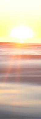 Screen Shot 2020-08-07 at 5.45.18 PM.PNG