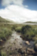 Schottland-9643.jpg