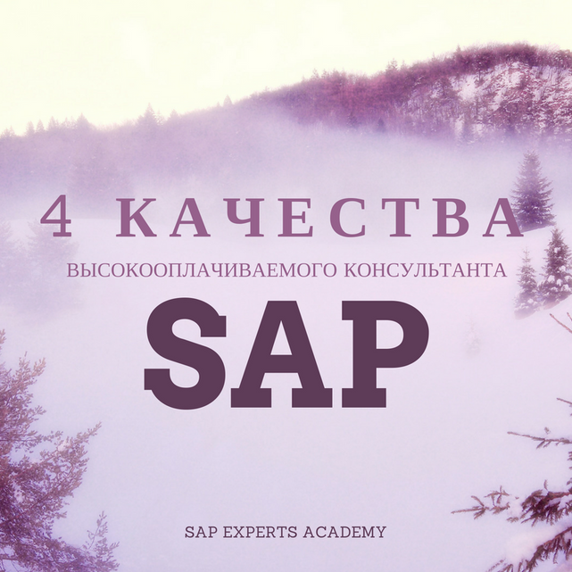 4 Качества Высокооплачиваемого Консультанта SAP
