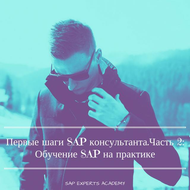 Первые шаги SAP консультанта: Обучение SAP на практике