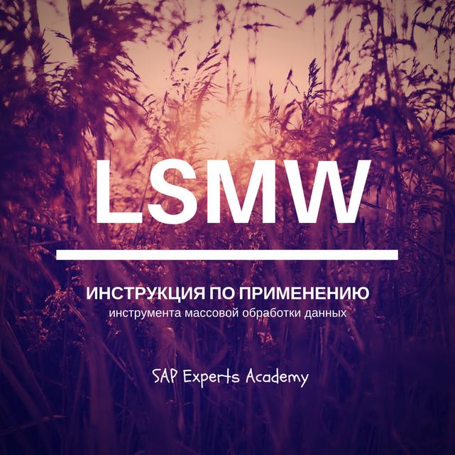 LSMW: Инструкция По Применению Инструмента Массовой Обработки Данных
