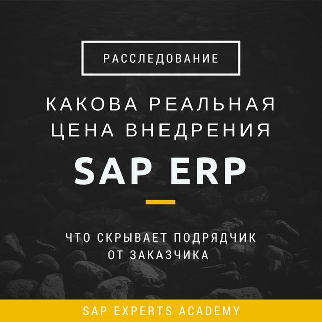Какова Реальная Цена Внедрения SAP ERP или Что Скрывает Подрядчик от Заказчика. Расследование.