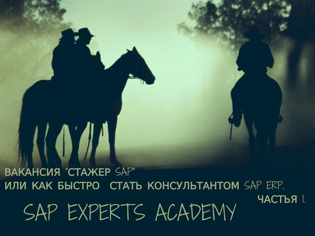 """Вакансия """"Стажер SAP"""" или Как Быстро  Стать Консультантом SAP ERP. Частья 1."""