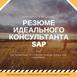 Резюме Идеального Консультанта SAP или Как Правильно Составить Резюме, Чтобы Вам Позвонили