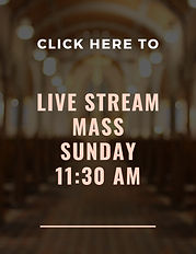 Livestream Mass (2).jpg