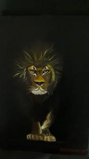 Leão sombra escuridão