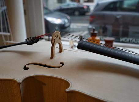 Fabrication d'un Violoncelle - 2015 (3)