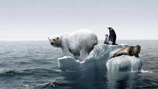 A Meteorológiai Világszervezet előzetes értékelése a 2016-os év éghajlatáról