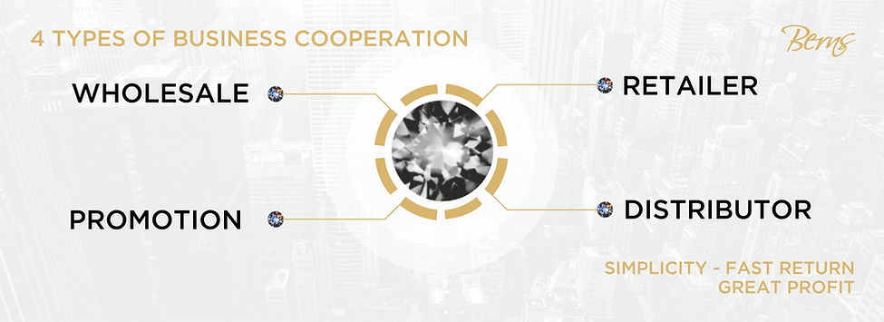 4 TYPES OF BUSINESS COOPERATIONS - BERNS