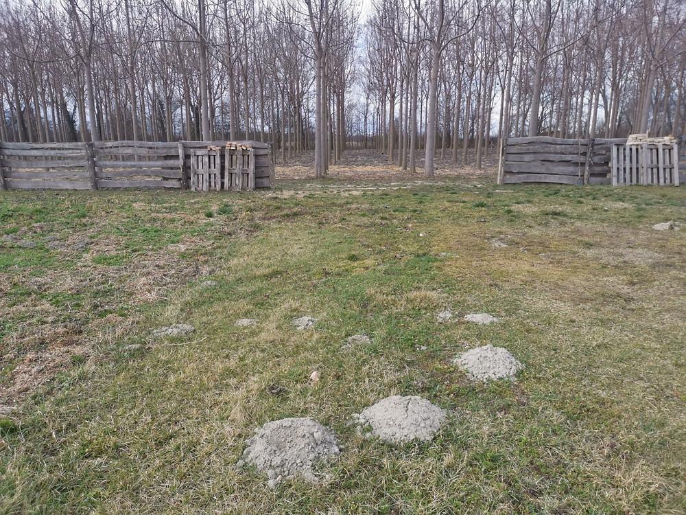 Kettő talaj talajszerkezetében jelentős eltérések láthatóak.