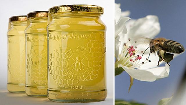 Fürtös méz - prémium termelői méz a Mecsekből
