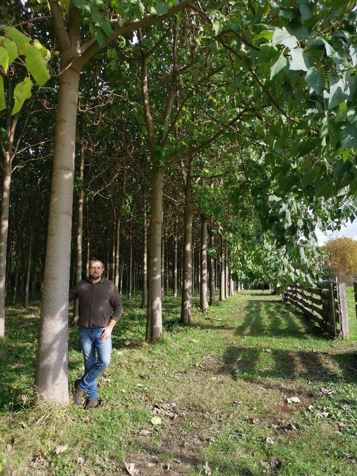 5 éves ültetvény