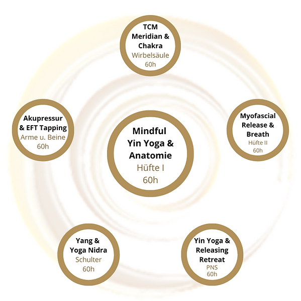 Mindful Yin Yoga & Anatomie Teacher Trai