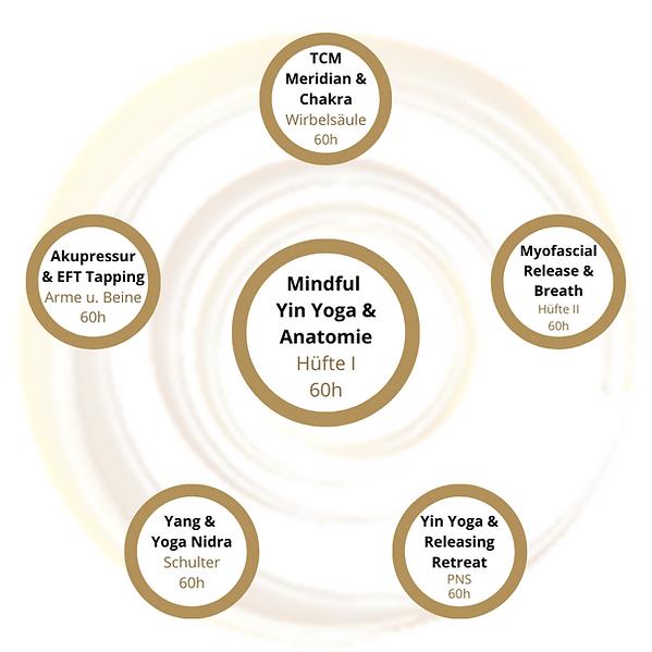 Mindful Yin Yoga & Anatomie Teacher Trai