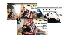 kostenlose Yin Yoga Videos Radiant Yinsi