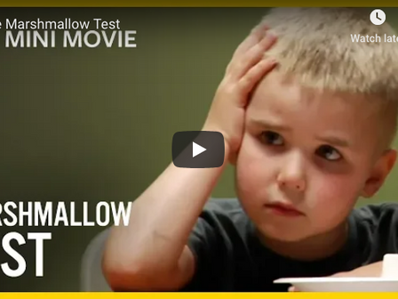 The Marshmallow Test and how High IQ does not Predetermine Success