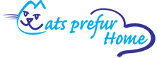 Logo (Transparent Background).png