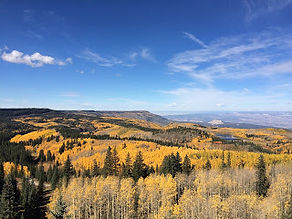 Cloaked in golden aspen, the Grand Mesa is one of Colorado's shining climbs (and descents)!