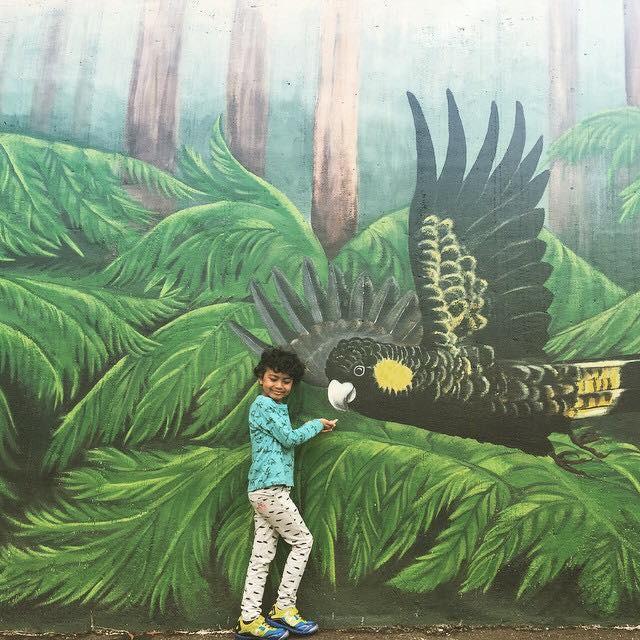 Cockatoo mural _Sioux Dollman.jpg