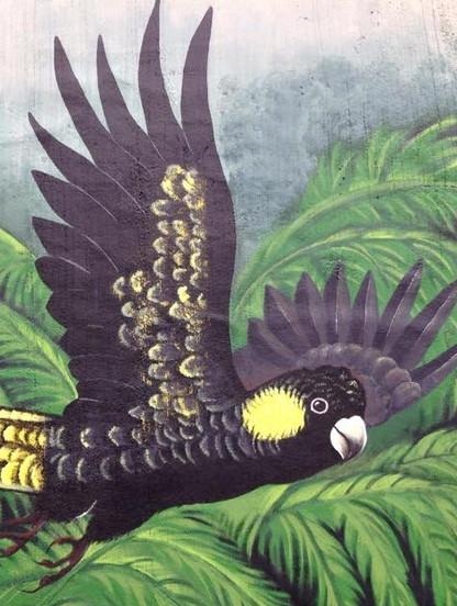 Mural%20in%20Cockatoo%20_Sioux%20Dollman