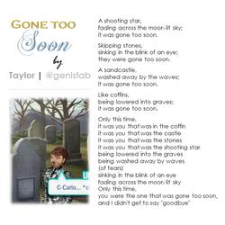 """""""Gone Too Soon"""" © 2015"""