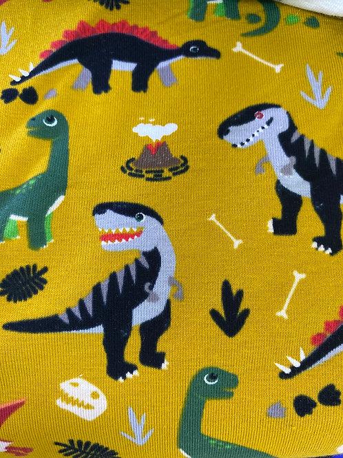 Dinosaur Jersey