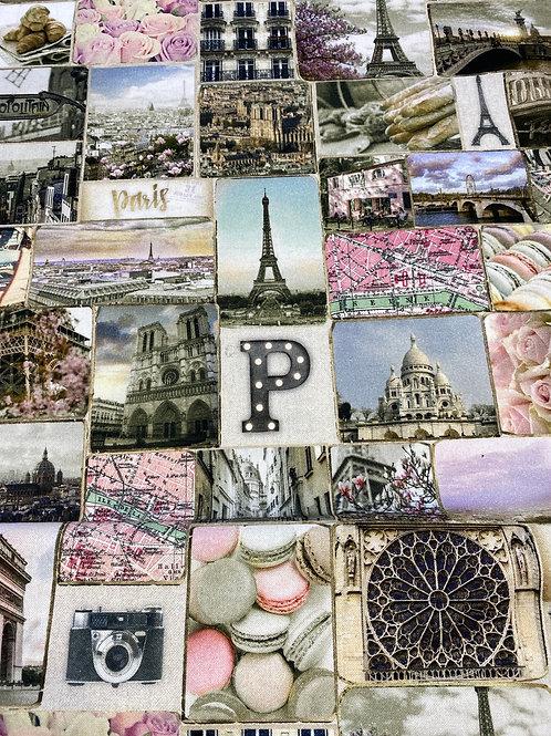 Paris cotton canvas