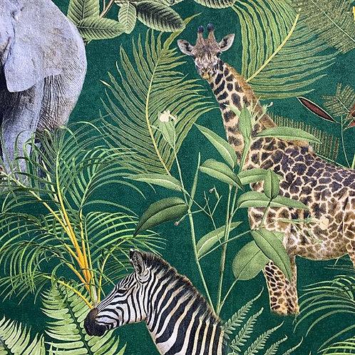 African Animals /Tiger/Elephant/zebra