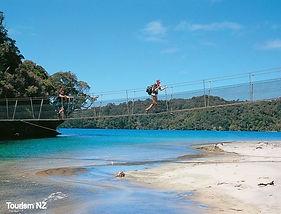 newzealand_image (1)_edited.jpg