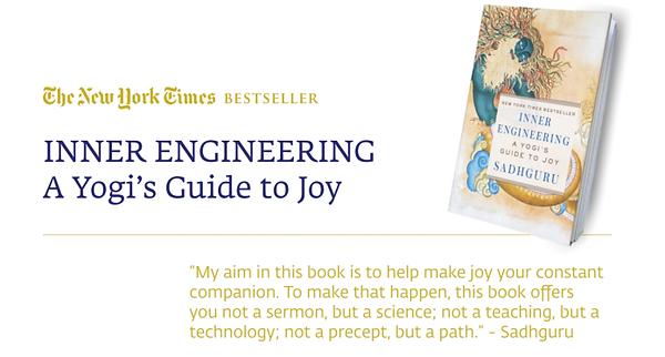 yogi's guide to joy.png