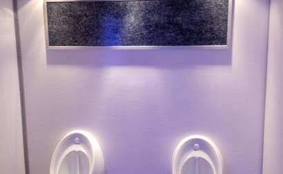 3-1-Unit-16 luxury urinals.jpg