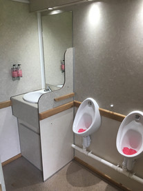 3+1 luxury toilets.jpg