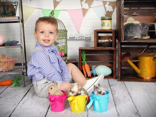 Spring Portraits with Bunnies and Chicks!