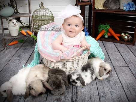 Spring Portraits with Bunnies!
