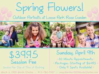 Outdoor Portraits at Loose Park Rose Garden