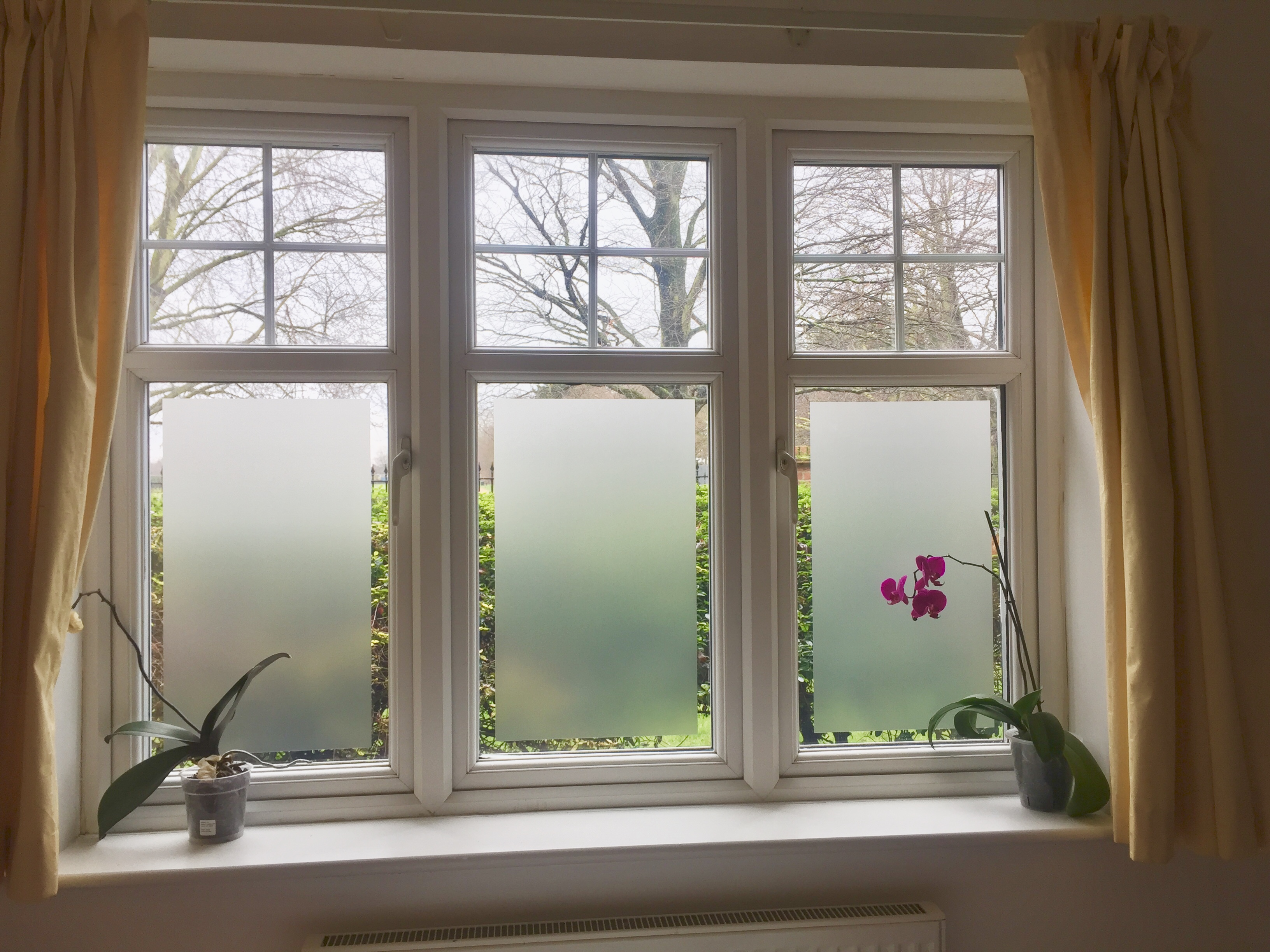 Frosted Glass Man London | Solar reflective film | Privacy