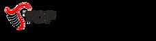 logo horizontal edited.png