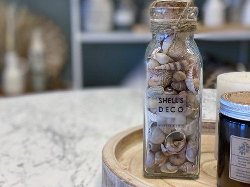 בקבוק צדפים דקו-טבעי