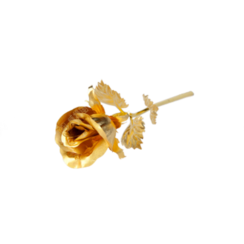 B0171 大號玫瑰(含苞)