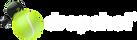 dropshot_logo_big_white.png