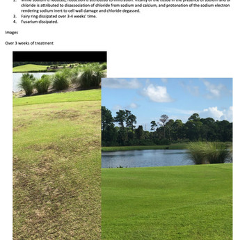 Show me the data: Split Greens in Florida