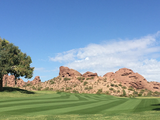 Arizona Country Club: WaterSOLV is doing Absolute Wonders for Our Turf
